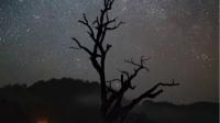 夜伴民谣-KilaKila直播