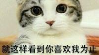 呦呦呦柚子柚子的直播间-KilaKila直播