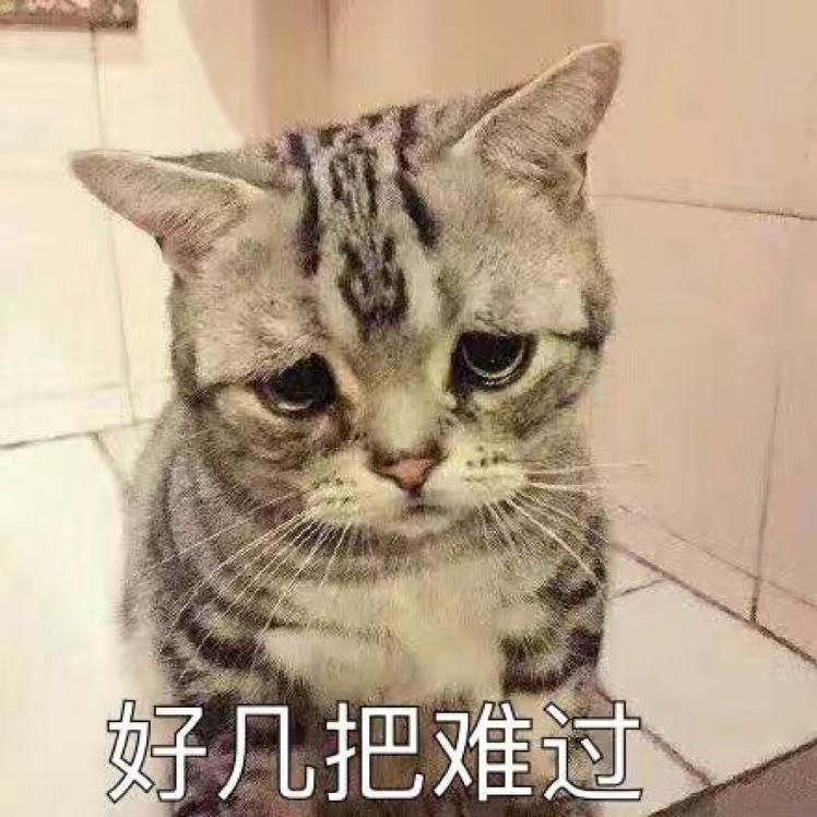 没人的-红豆Live直播