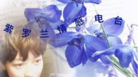 紫罗兰情感电台 第5期-红豆Live直播