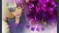 紫罗兰情感电台 第7期-KilaKila直播
