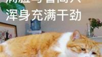 沉迷录音满脸开心QAQ-红豆Live直播